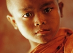 Myanmar Young Monk