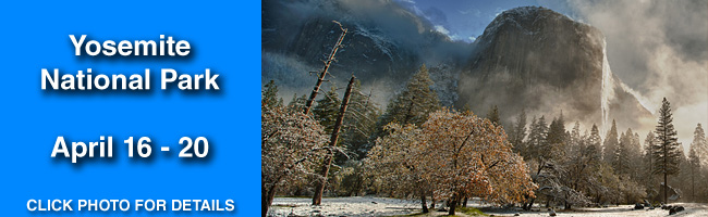 Yosemite-Photo-Workshops